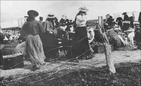 Γυναίκες και παιδιά των Αφρικάνερς (Μπόερς) πίσω από πρόχειρα συρματοπλέγματα (1900). Πηγή: www.reformation.org/ The Boer War.